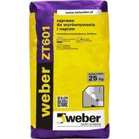 WEBER ZT601